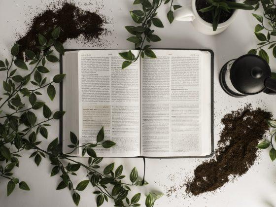 journal aesthetic, kata mutiara putus asa dalam hidup, kata motivasi putus asa, kata petuah hidup